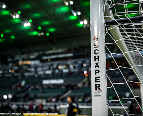 Roaler Goal